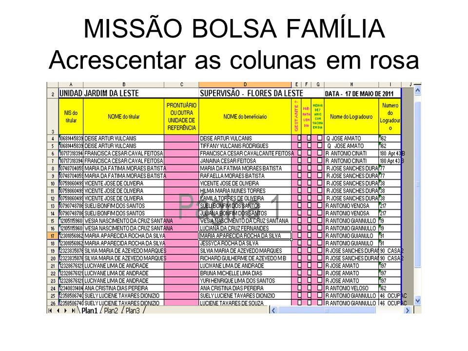 MISSÃO BOLSA FAMÍLIA Acrescentar as colunas em rosa