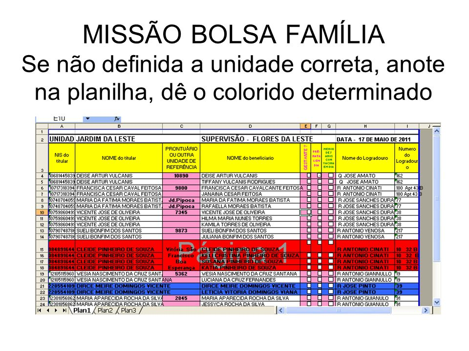 MISSÃO BOLSA FAMÍLIA Se não definida a unidade correta, anote na planilha, dê o colorido determinado