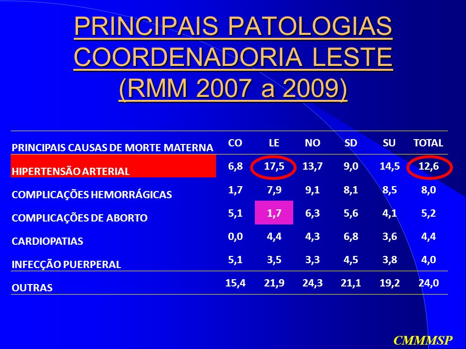 PRINCIPAIS PATOLOGIAS COORDENADORIA LESTE (RMM 2007 a 2009)
