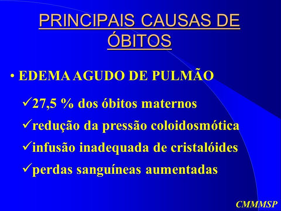 PRINCIPAIS CAUSAS DE ÓBITOS