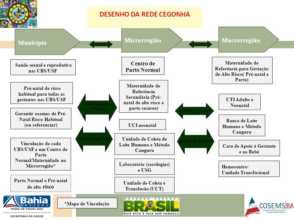 DESENHO DA REDE CEGONHA