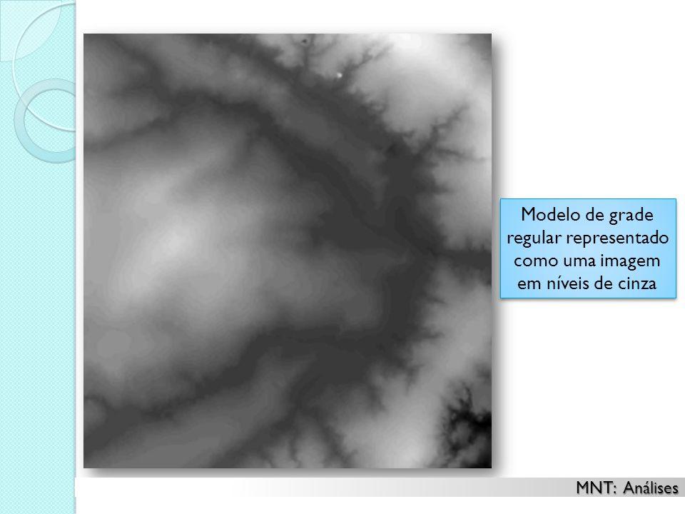 Modelo de grade regular representado como uma imagem