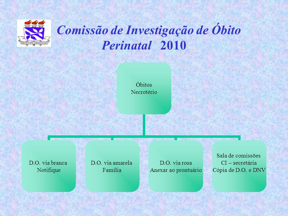 Comissão de Investigação de Óbito Perinatal 2010