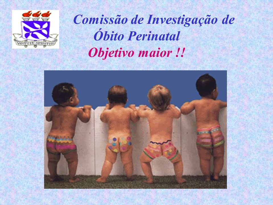 Comissão de Investigação de Óbito Perinatal Objetivo maior !!