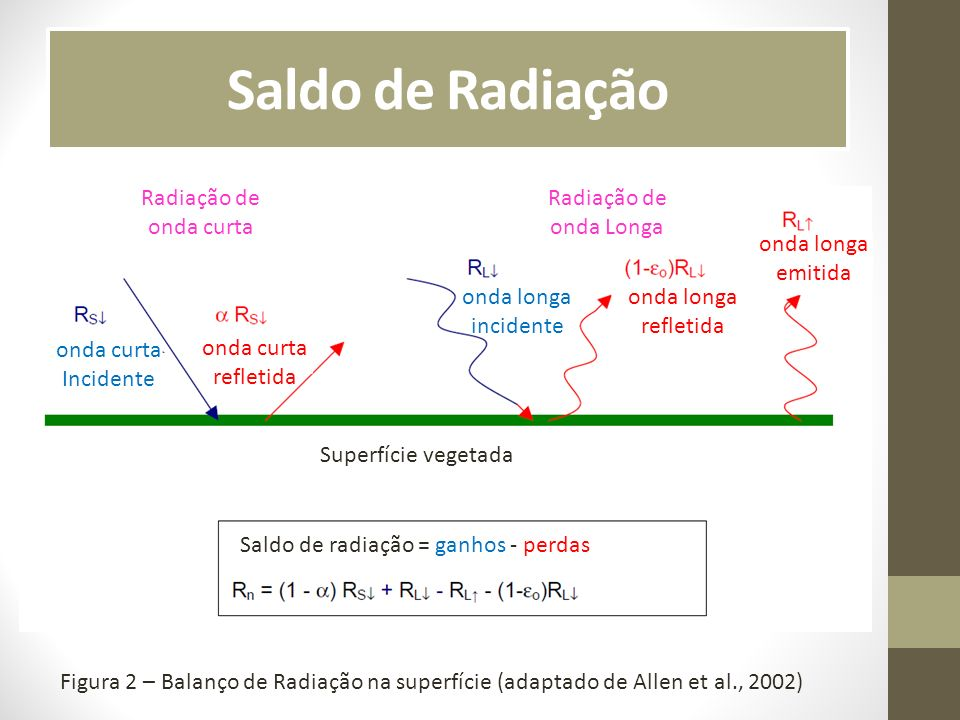 Saldo de Radiação Radiação de onda curta Radiação de onda Longa
