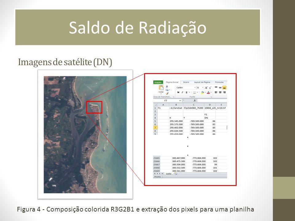 Imagens de satélite (DN)