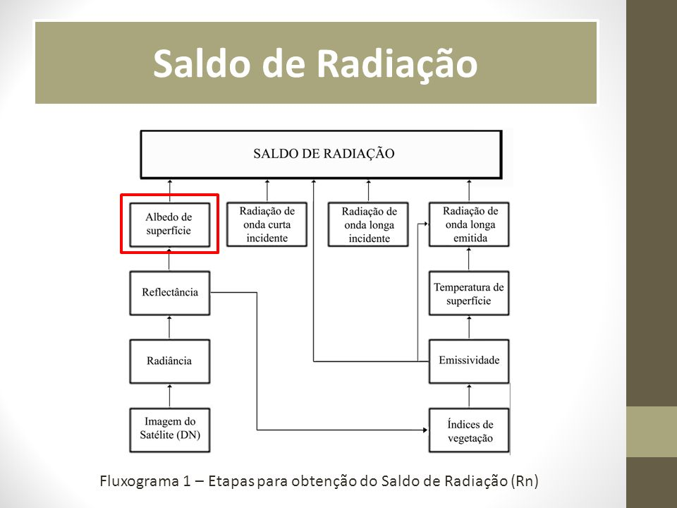 Fluxograma 1 – Etapas para obtenção do Saldo de Radiação (Rn)