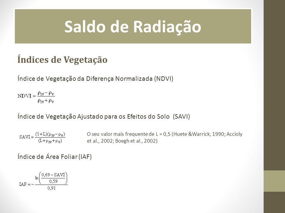 Saldo de Radiação Índices de Vegetação