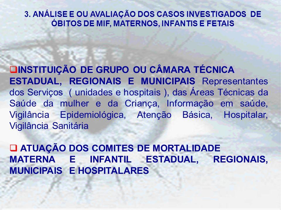 INSTITUIÇÃO DE GRUPO OU CÂMARA TÉCNICA