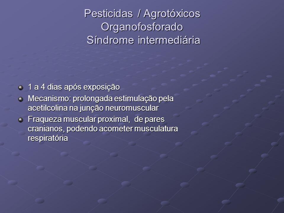 Pesticidas / Agrotóxicos Organofosforado Síndrome intermediária