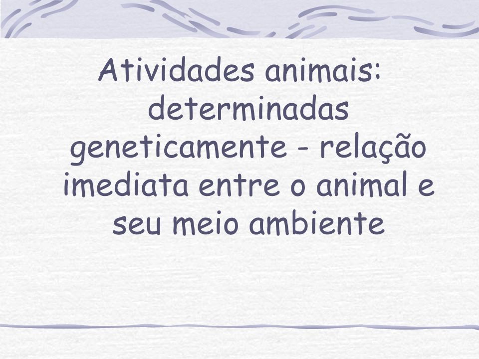 Atividades animais: determinadas geneticamente - relação imediata entre o animal e seu meio ambiente