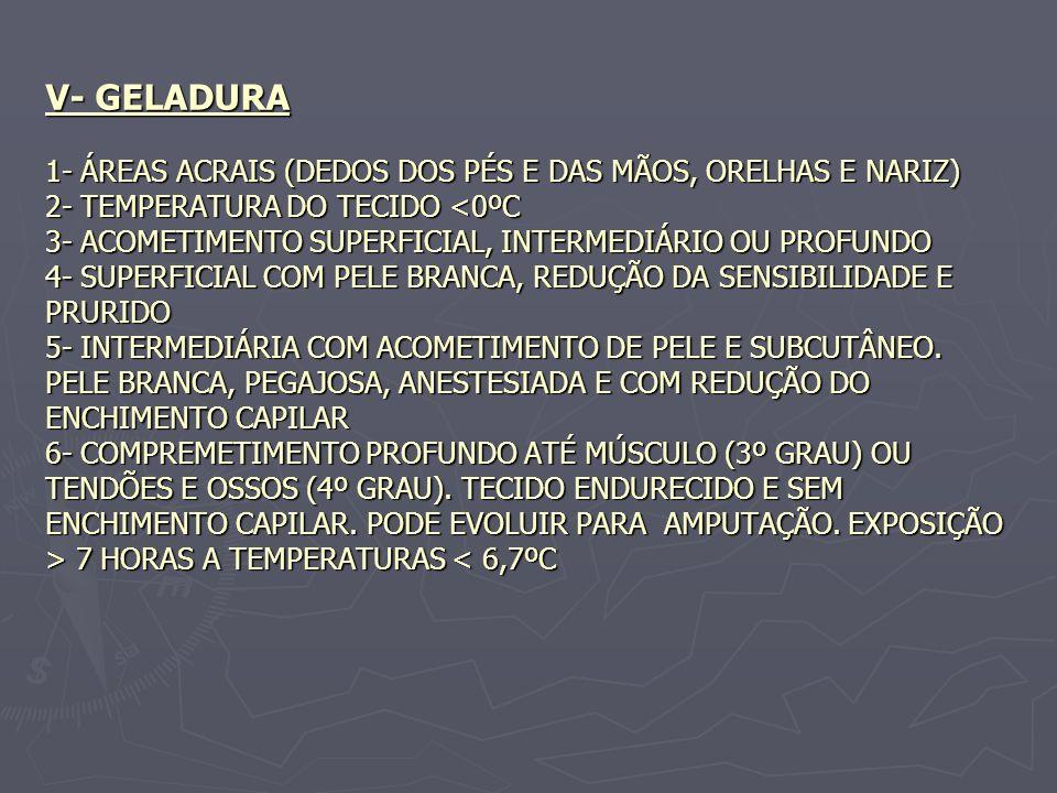 V- GELADURA 1- ÁREAS ACRAIS (DEDOS DOS PÉS E DAS MÃOS, ORELHAS E NARIZ) 2- TEMPERATURA DO TECIDO <0ºC 3- ACOMETIMENTO SUPERFICIAL, INTERMEDIÁRIO OU PROFUNDO 4- SUPERFICIAL COM PELE BRANCA, REDUÇÃO DA SENSIBILIDADE E PRURIDO 5- INTERMEDIÁRIA COM ACOMETIMENTO DE PELE E SUBCUTÂNEO.