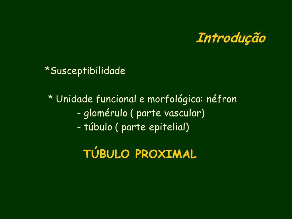 Introdução TÚBULO PROXIMAL *Susceptibilidade