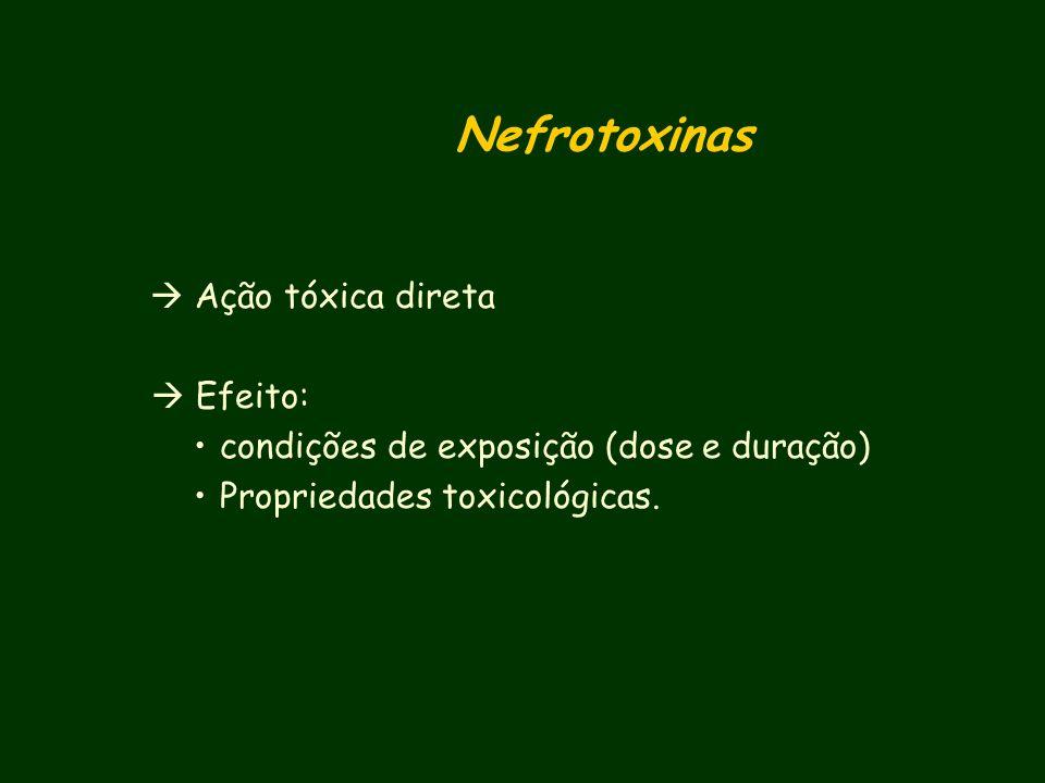 Nefrotoxinas  Efeito: condições de exposição (dose e duração)