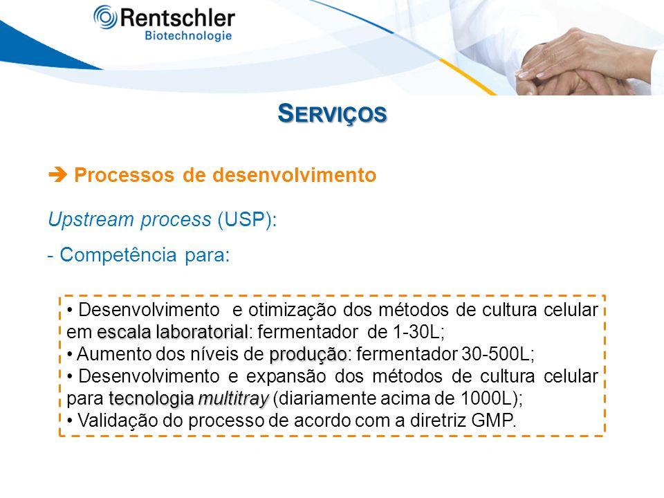 Serviços  Processos de desenvolvimento Upstream process (USP):