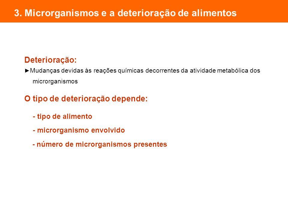 3. Microrganismos e a deterioração de alimentos