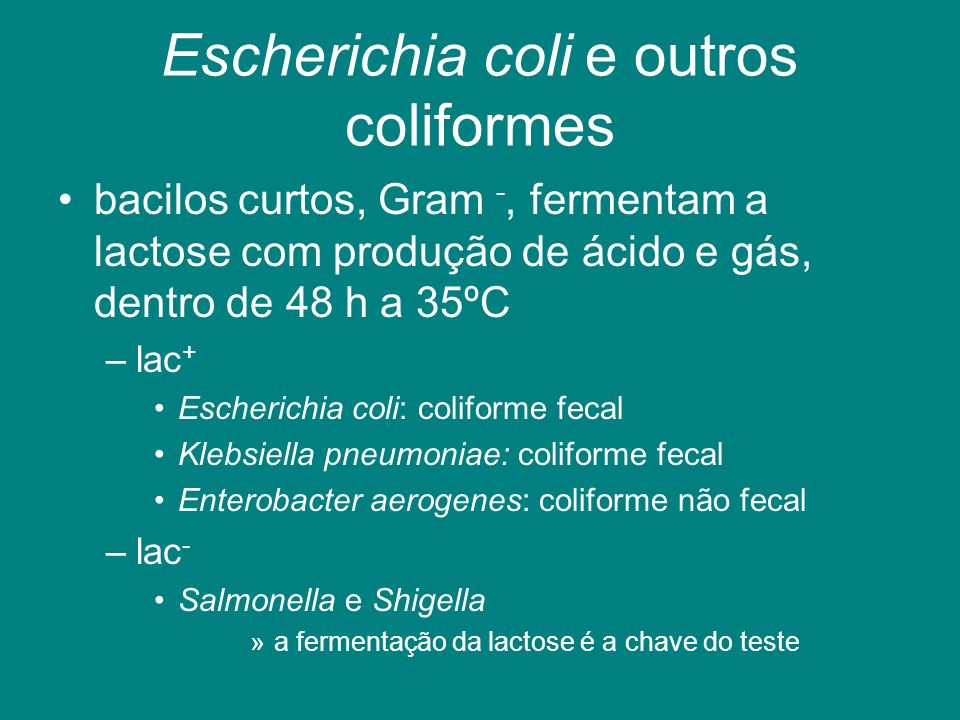 Escherichia coli e outros coliformes