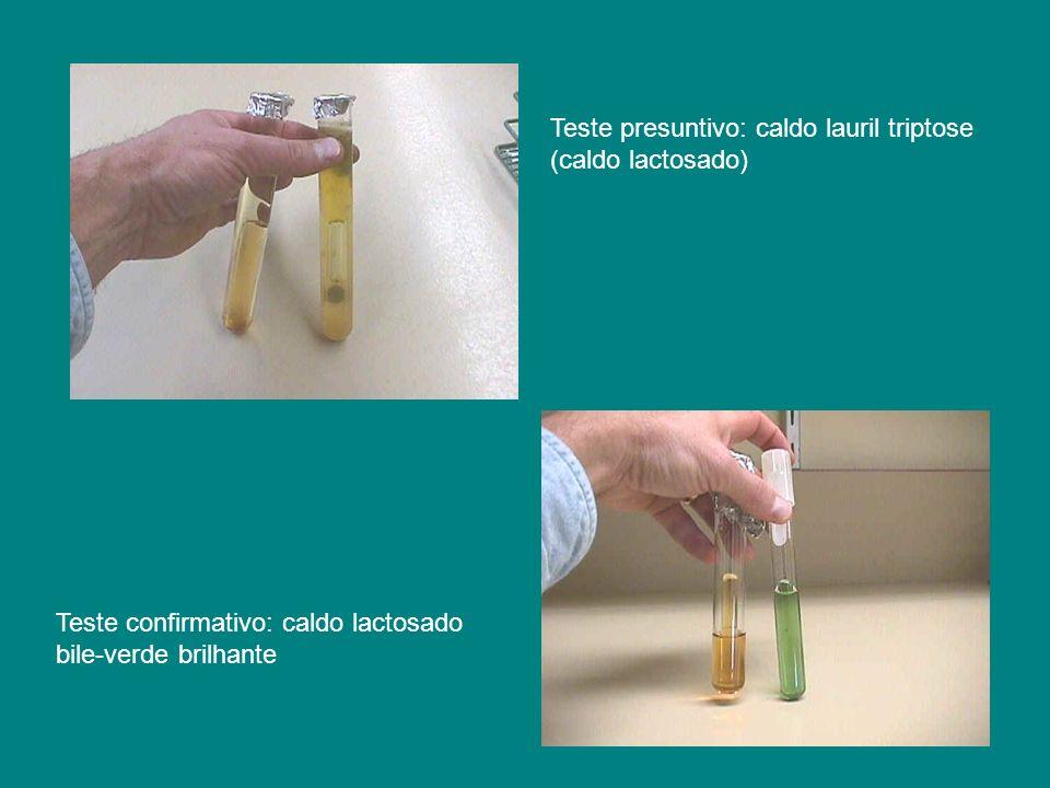 Teste presuntivo: caldo lauril triptose