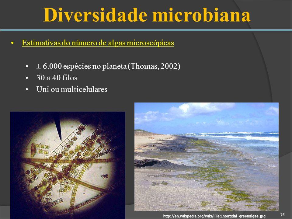 Diversidade microbiana