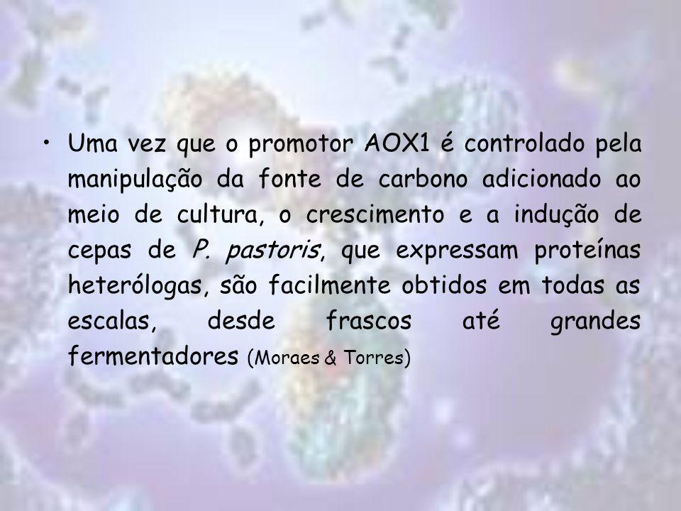Uma vez que o promotor AOX1 é controlado pela manipulação da fonte de carbono adicionado ao meio de cultura, o crescimento e a indução de cepas de P.
