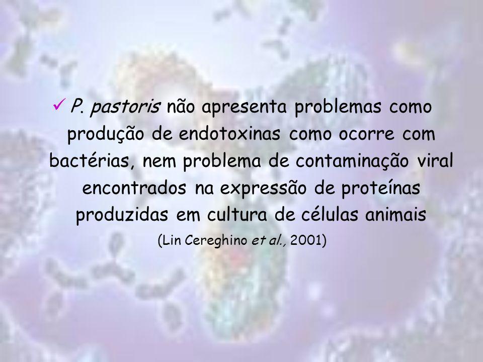P. pastoris não apresenta problemas como produção de endotoxinas como ocorre com bactérias, nem problema de contaminação viral encontrados na expressão de proteínas produzidas em cultura de células animais