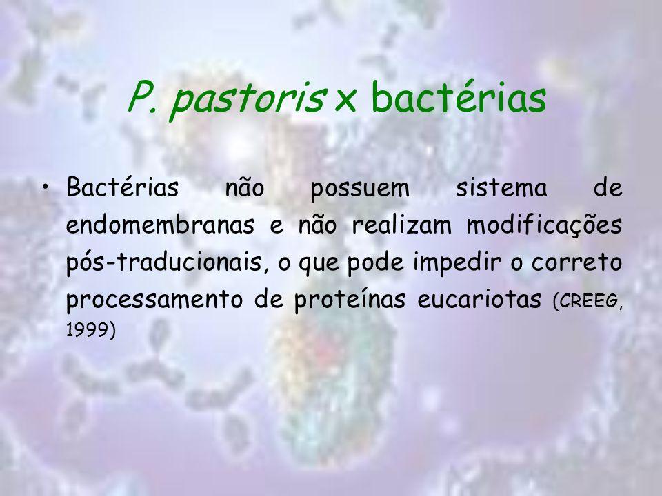 P. pastoris x bactérias
