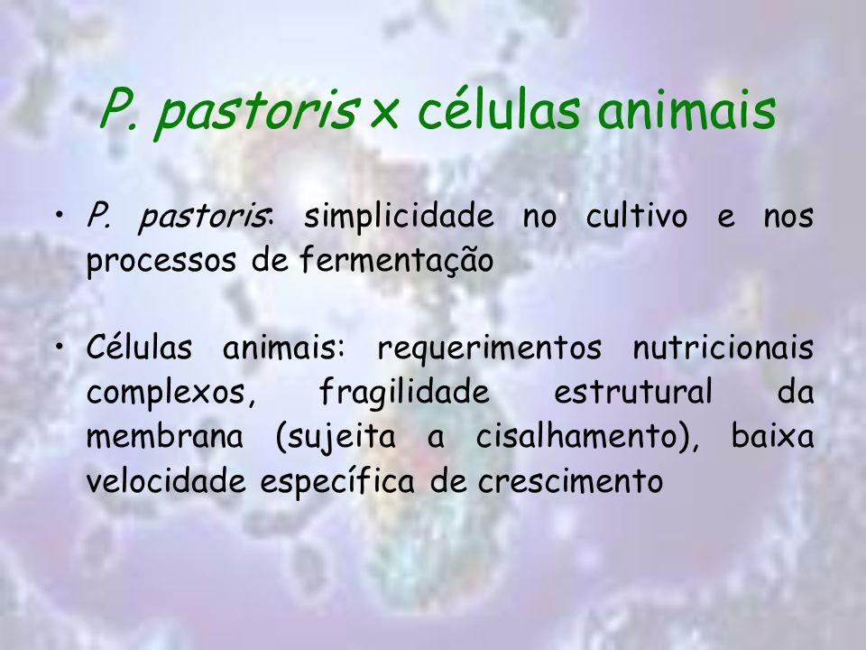 P. pastoris x células animais