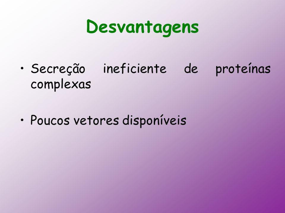 Desvantagens Secreção ineficiente de proteínas complexas