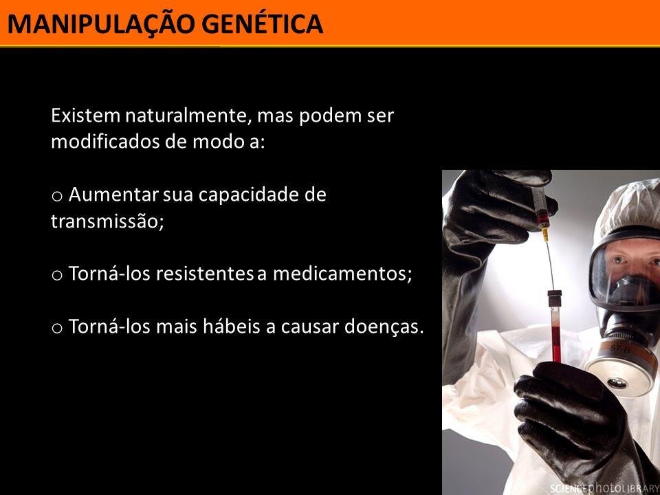 MANIPULAÇÃO GENÉTICA Existem naturalmente, mas podem ser modificados de modo a: Aumentar sua capacidade de transmissão;