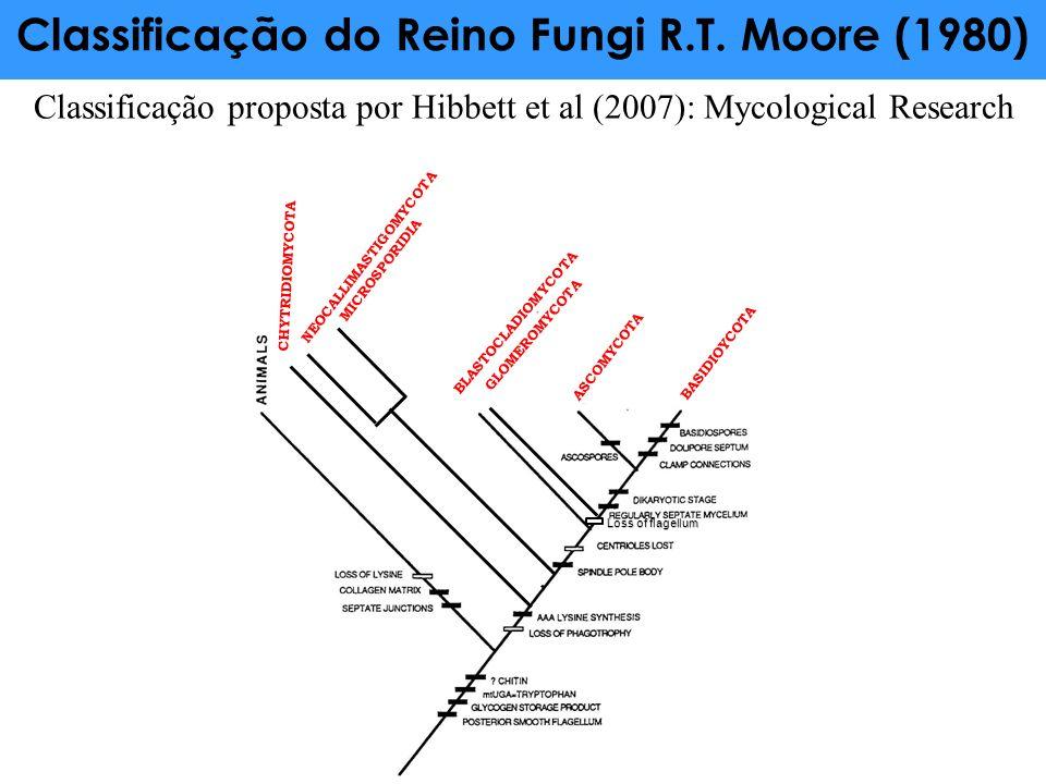 Classificação do Reino Fungi R.T. Moore (1980) NEOCALLIMASTIGOMYCOTA