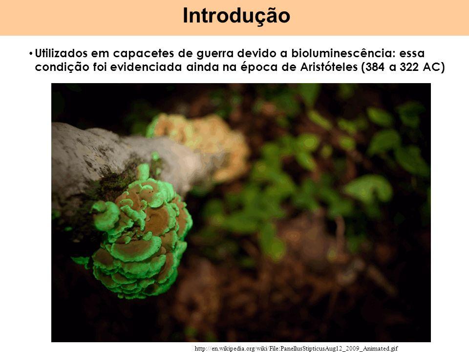 Introdução Utilizados em capacetes de guerra devido a bioluminescência: essa condição foi evidenciada ainda na época de Aristóteles (384 a 322 AC)