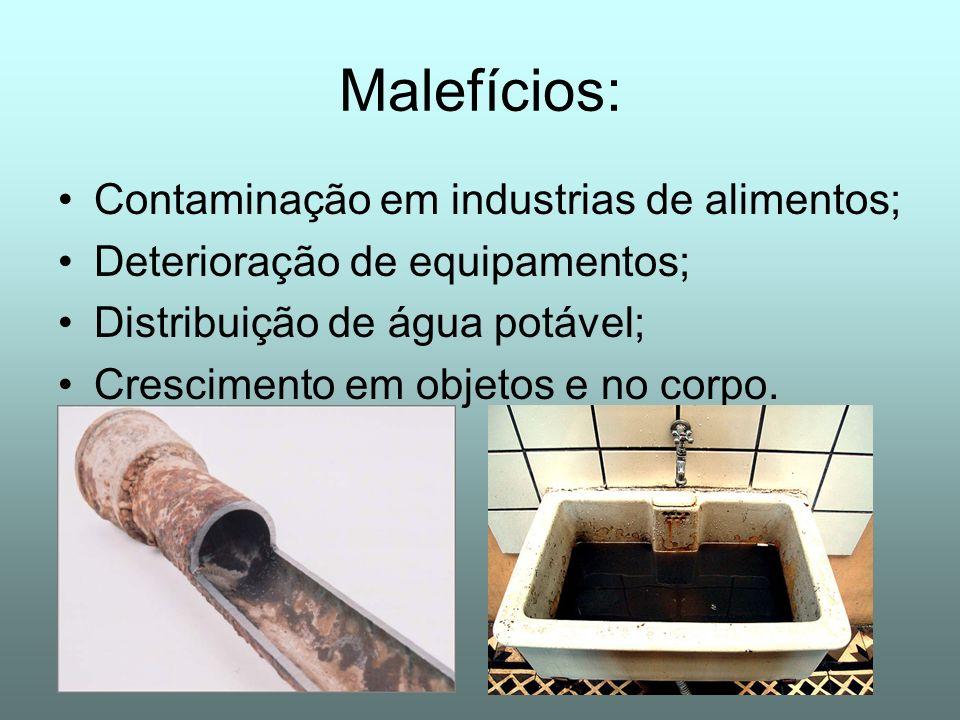Malefícios: Contaminação em industrias de alimentos;