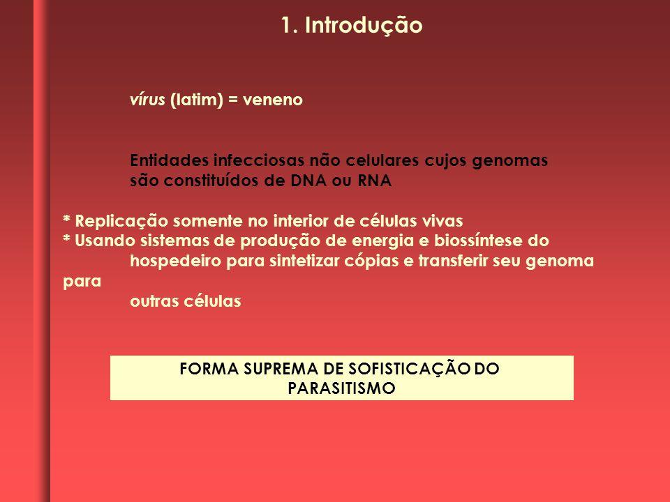 FORMA SUPREMA DE SOFISTICAÇÃO DO