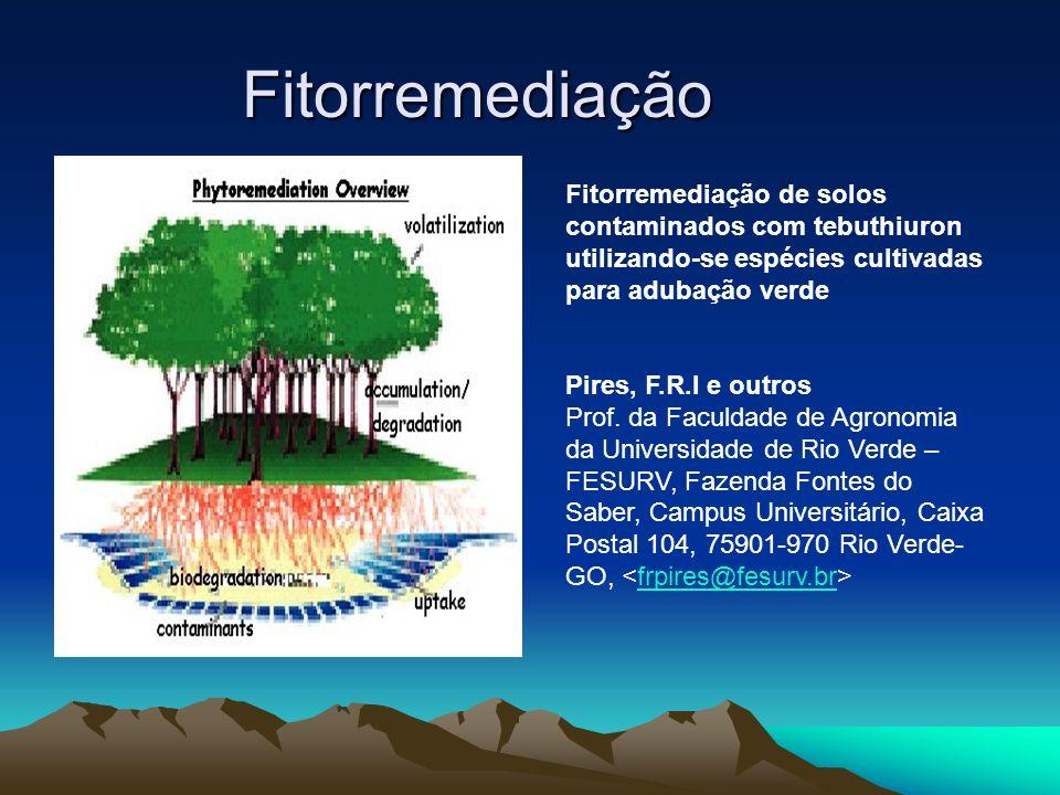 Fitorremediação Fitorremediação de solos contaminados com tebuthiuron utilizando-se espécies cultivadas para adubação verde.