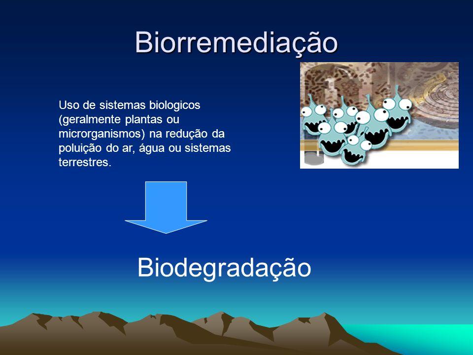 Biorremediação Biodegradação
