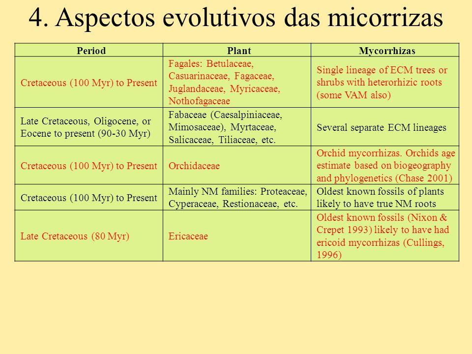 4. Aspectos evolutivos das micorrizas