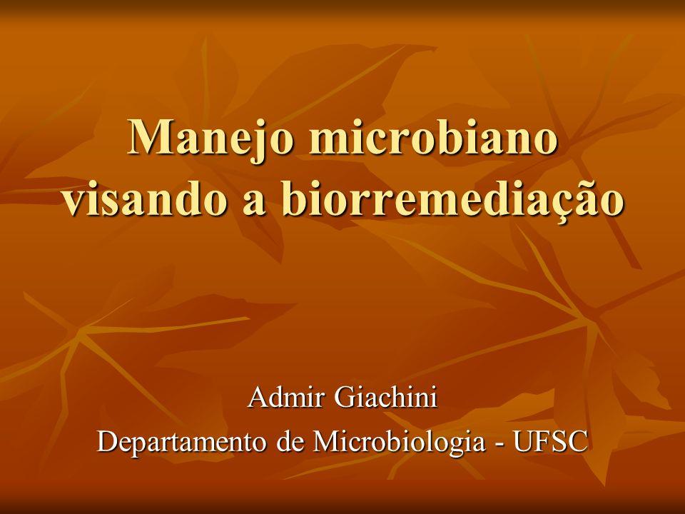 Manejo microbiano visando a biorremediação