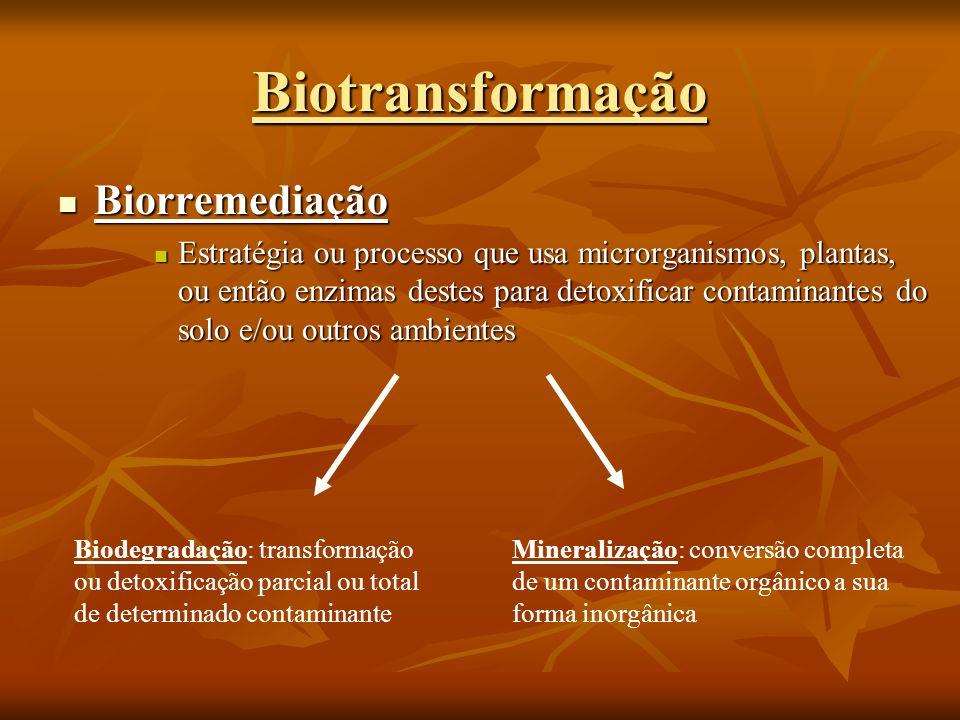Biotransformação Biorremediação