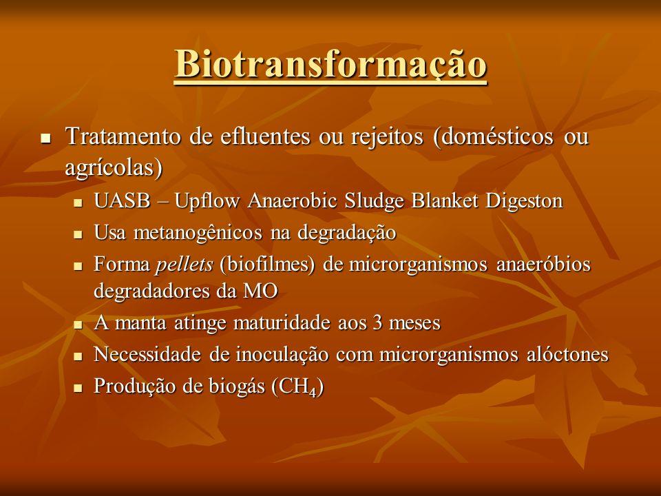 Biotransformação Tratamento de efluentes ou rejeitos (domésticos ou agrícolas) UASB – Upflow Anaerobic Sludge Blanket Digeston.