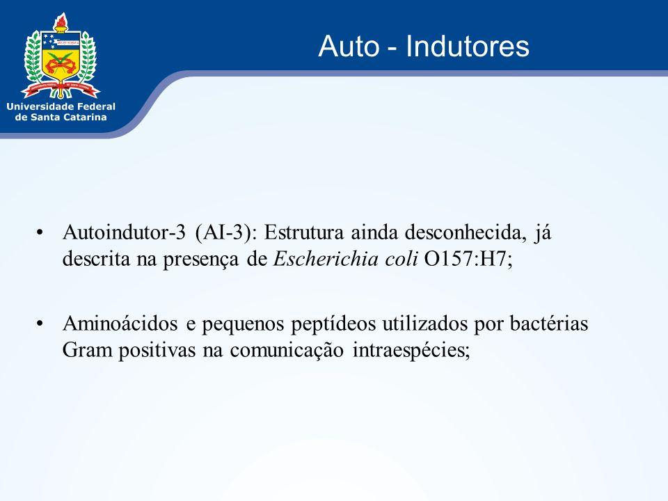 Auto - Indutores Autoindutor-3 (AI-3): Estrutura ainda desconhecida, já descrita na presença de Escherichia coli O157:H7;