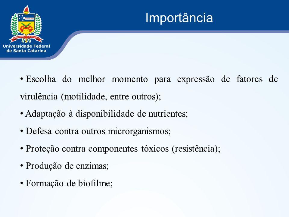 Importância Escolha do melhor momento para expressão de fatores de virulência (motilidade, entre outros);