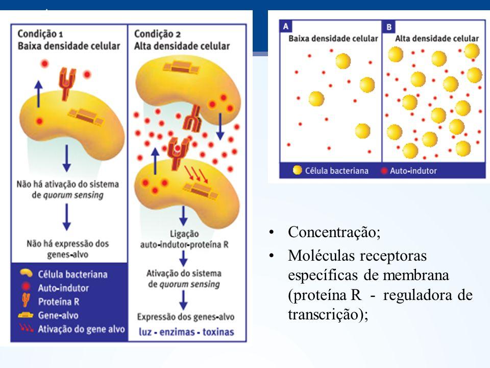 Concentração;Moléculas receptoras específicas de membrana (proteína R - reguladora de transcrição);