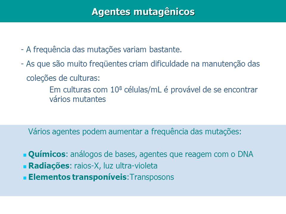 Agentes mutagênicos - A frequência das mutações variam bastante.