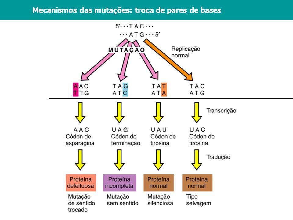 Mecanismos das mutações: troca de pares de bases