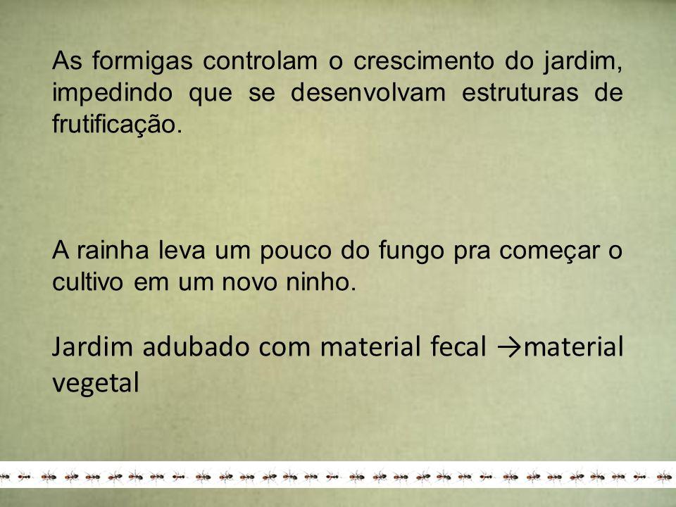 Jardim adubado com material fecal →material vegetal