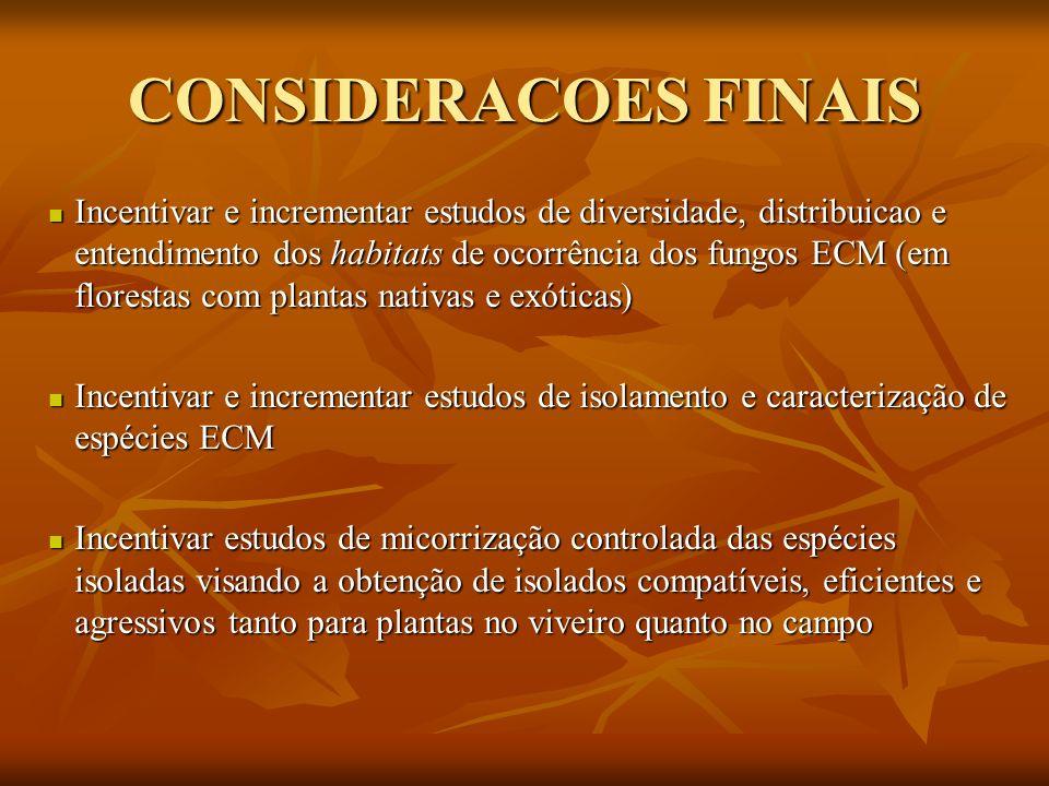 CONSIDERACOES FINAIS