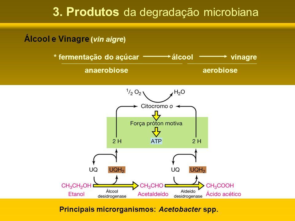 3. Produtos da degradação microbiana