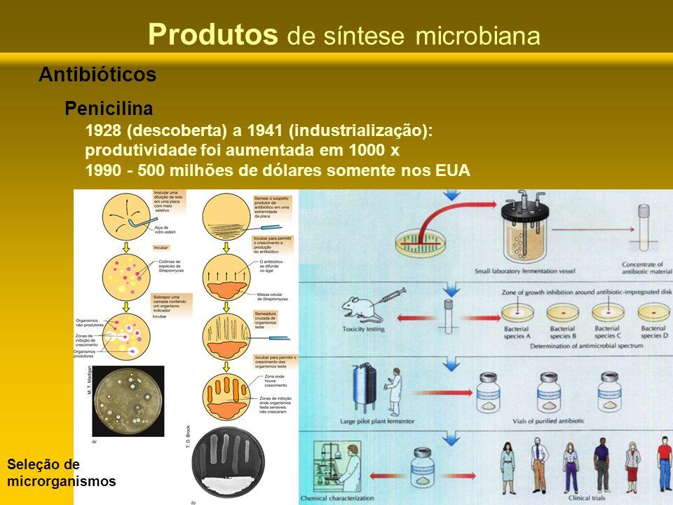 Produtos de síntese microbiana