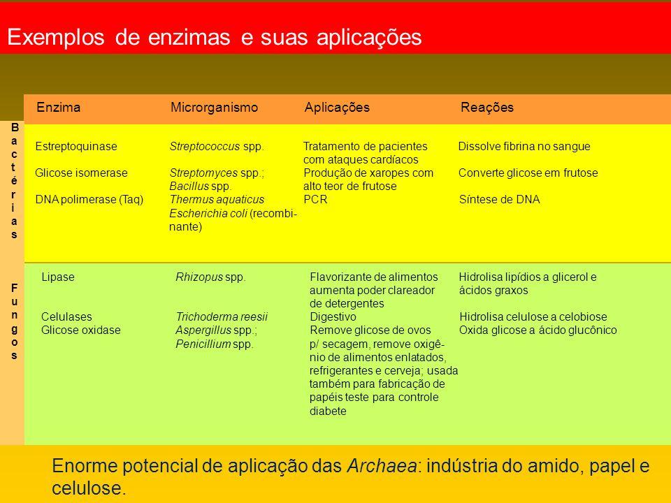 Exemplos de enzimas e suas aplicações