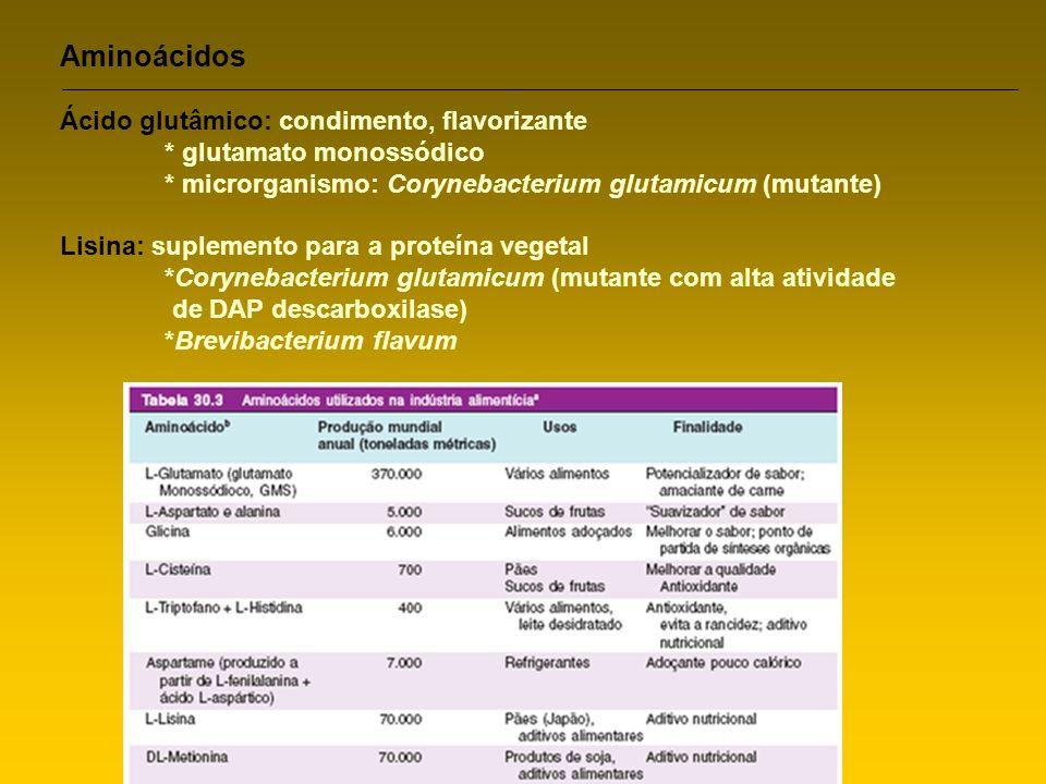 Aminoácidos Ácido glutâmico: condimento, flavorizante